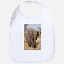 Elephants Stroll Bib