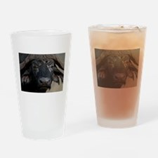Buffalo Portrait Drinking Glass