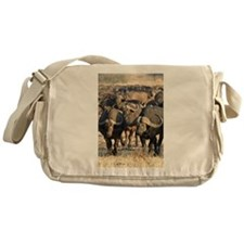 Buffalo Stare Down Messenger Bag