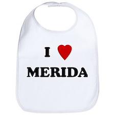 I Love Merida Bib
