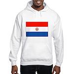 Flag of Paraguay Hooded Sweatshirt