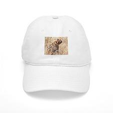 Hyena Baseball Cap