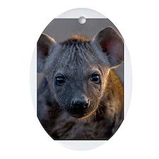 Hyena Baby Portrait Ornament (Oval)