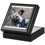 African Wild Dog Keepsake Box