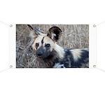 African Wild Dog Banner