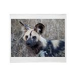African Wild Dog Throw Blanket