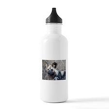 African Wild Dog Sports Water Bottle