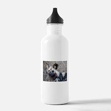 African Wild Dog Water Bottle