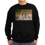 Lions Playing in Water Sweatshirt (dark)