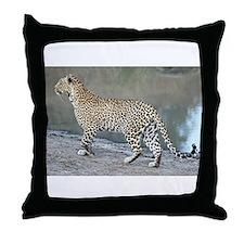 Karula On The Move Throw Pillow