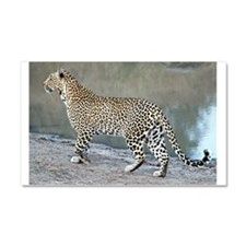 Karula On The Move Car Magnet 20 x 12