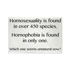 Homosexuality and Homophobia Rectangle Magnet