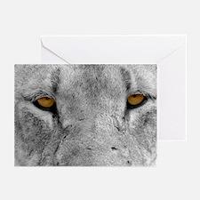 Lion Eyes Greeting Cards (Pk of 20)