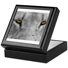 Lion Eyes Keepsake Box