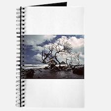 Hana, Maui Journal