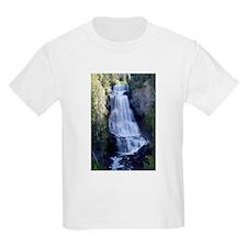 Alexander Falls, Brisitsh Col T-Shirt