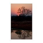 Lion Sands Sunset Sticker (Rectangle 50 pk)