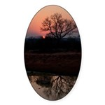 Lion Sands Sunset Sticker (Oval 50 pk)