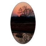 Lion Sands Sunset Sticker (Oval 10 pk)