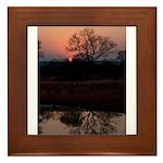 Lion Sands Sunset Framed Tile