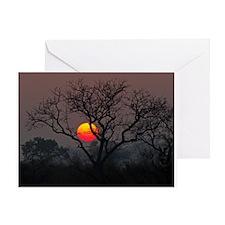 Londolozi Sunset Greeting Card