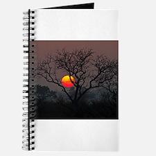 Londolozi Sunset Journal