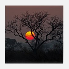 Londolozi Sunset Tile Coaster