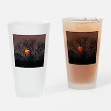 Londolozi Sunset Drinking Glass
