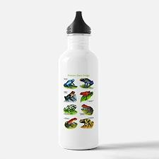Poison Dart Frogs Water Bottle