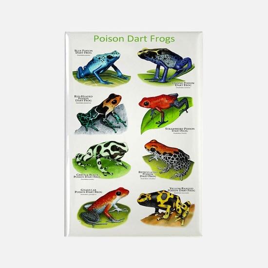 Poison Dart Frogs Rectangle Magnet