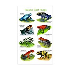 Poison Dart Frogs Decal