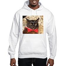 FPG Xmas Cat V Hoodie