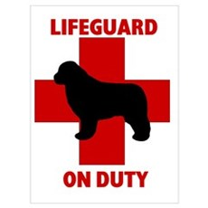 Newfoundland Dog Water Rescue Poster