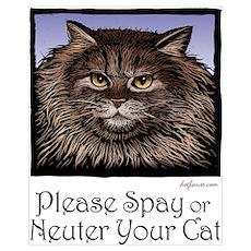 Spay/Neuter Cat Poster