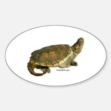 Snazzy Snapper Oval Decal