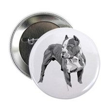 "Pitbull greys 2.25"" Button (10 pack)"