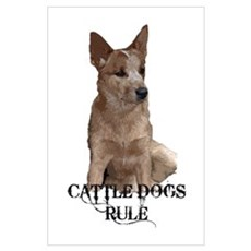 Cattle Dog (ACD) Poster