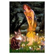 Fairies / Maine Coon Canvas Art