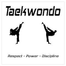Taekwondo Respect Poster