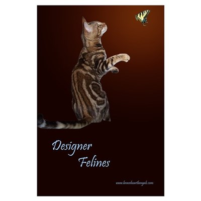 Bengal Cat Framed Print