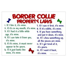 Border Collie Property Laws 2 Canvas Art