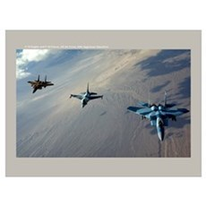 Aggressors Framed Print
