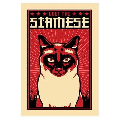SIAMESE Cat Dictator Framed Print