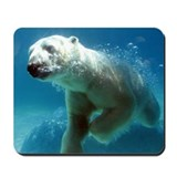 Polar bears Mouse Pads