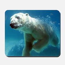 Swim With The Polar Bear Mousepad