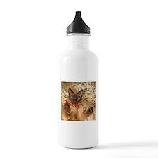 FPG Xmas Cat III Sports Water Bottle