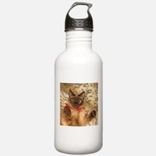 FPG Xmas Cat III Sports Water Bottle
