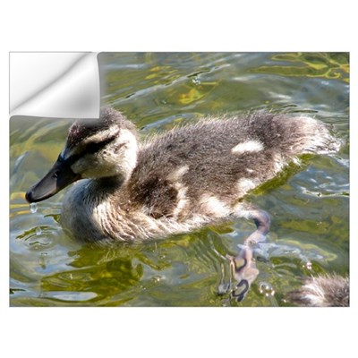 Lake Padden Baby Duck Wall Decal
