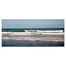 Surfers at Honoli'i Beach Poster