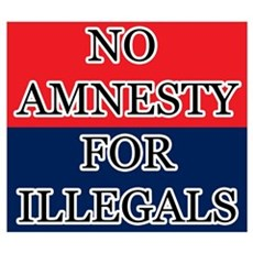 No Amnesty Framed Print